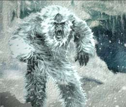 Do you know where disappeared Yeti