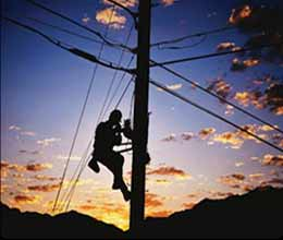 negligence of electricity department took one life