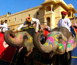 elephant riding at amber fort
