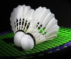 Aditya and Siddhartha will play semifinal of badminton