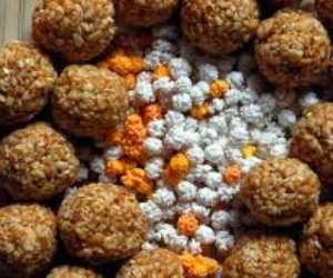 no auspicious occasion of Makar Sankranti