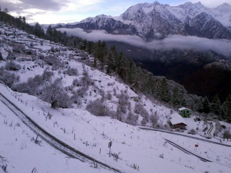 india switzerland auli