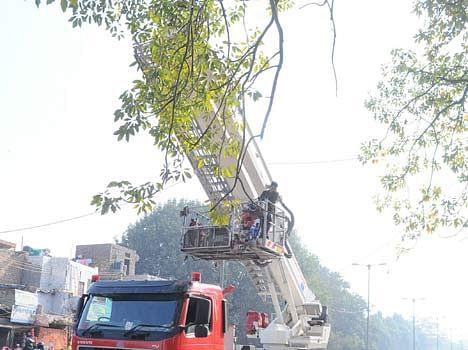eagle rescue operation in delhi