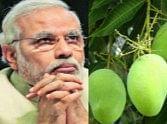 Haji Kalimullah desire that Pm taste his Modi-aam