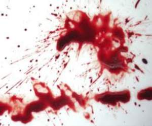 couple have been dead in srinagar