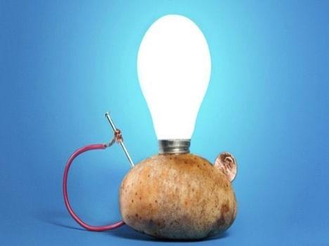 Led Lighting To Potato - एक आलू से 40 दिन तक जल