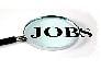 गुडन्यूज: सीटीयू में 725 पदों पर होगी भर्ती
