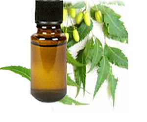 neem oil benefits for hair care