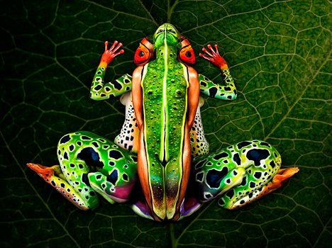body paint showcasing a frog