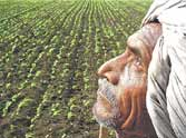Now indian farmer will face problem of water