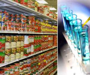 examined of 24 canned food samples, most samples unsafe