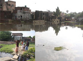 Varuna River Flown high, water reached houses.