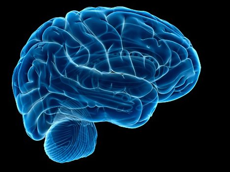 habits that can damage your brain severly