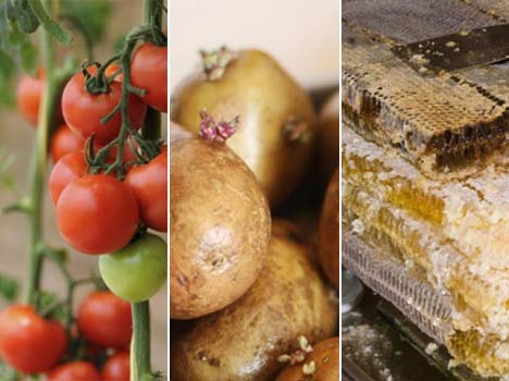 10 deadly foods that you probably have in your kitchen