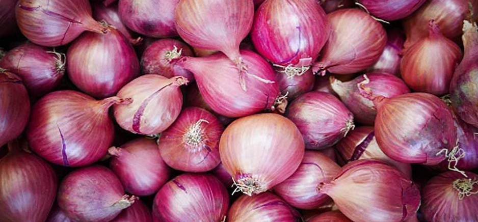 himachal onion prices reached fifty rupee per kg