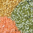 brazil agriculture minister would come india for pulse seeds
