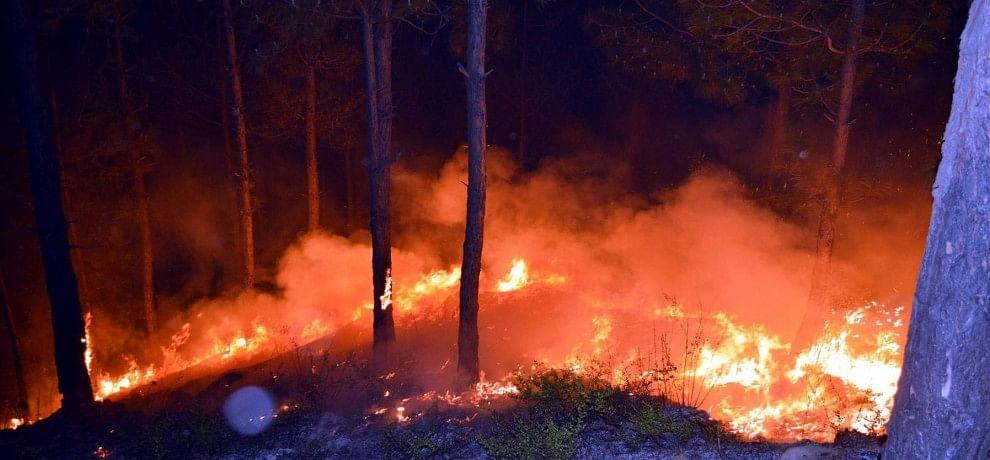 reason behind forest fire in uttarakhand