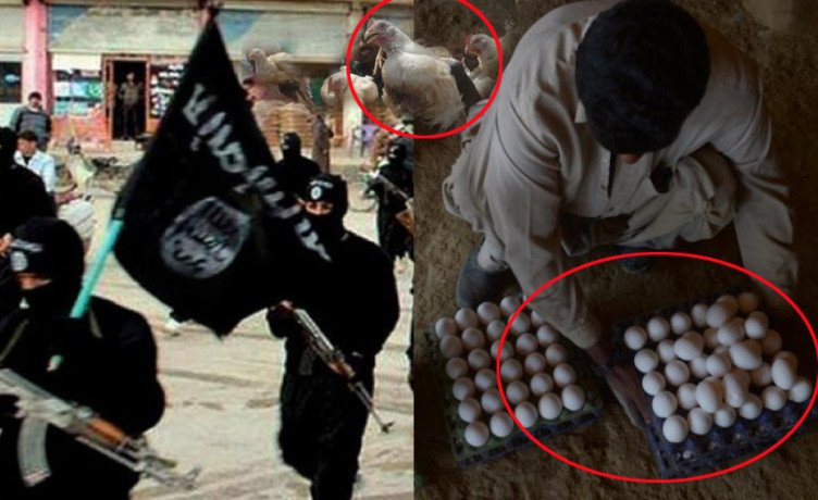 is militants selling eggs and chicken in libya