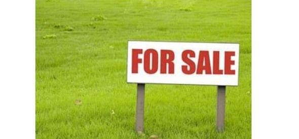 Illegal colonies cut property dealer selling plot