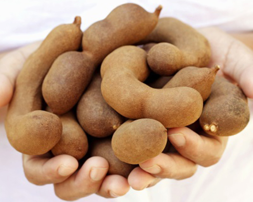 advantages of tamarind