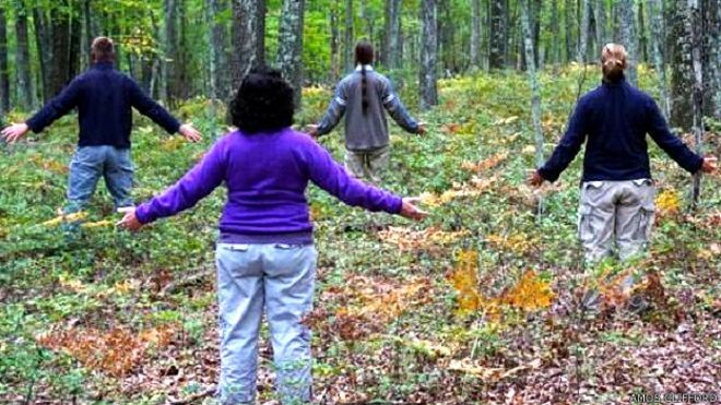 ' Forest Bathing ' To avoid stress