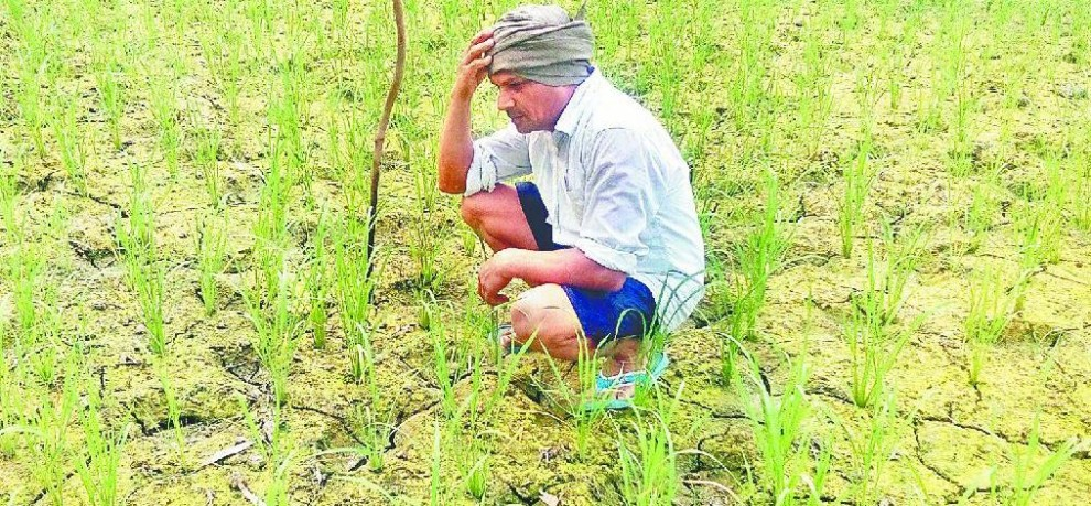 GDA shock, will raise compensation to farmers