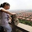 richest village in china