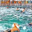 saphair house winner, saphair house winner in swimming, batala, amritsar