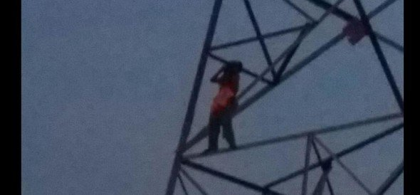 woman clinb on electric pole for liquor