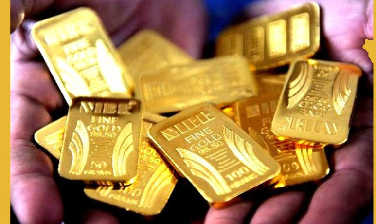 8.3 Kg Gold Biscuits Seized By DRI In Tamil Nadu