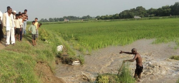 The crops were submerged canal cuts