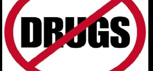 The cultivation of drugs destroyed