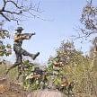 story of indian para camando of indian army