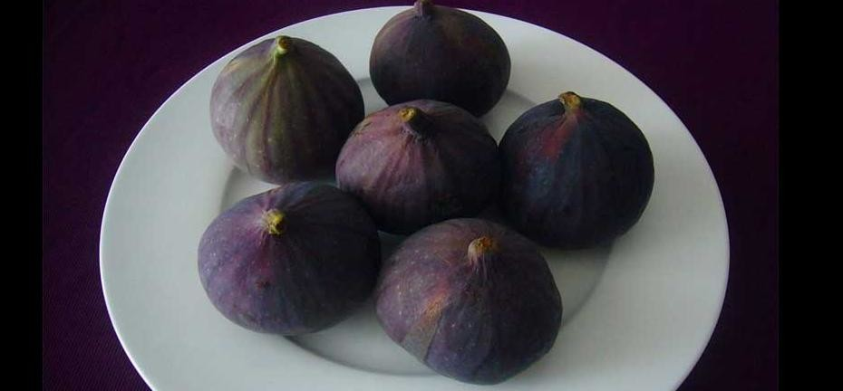 Healthy Food Fig
