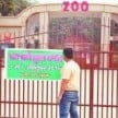 Wildlife lovers will be able to see the zoo for free throughout the week, Kurukshetra