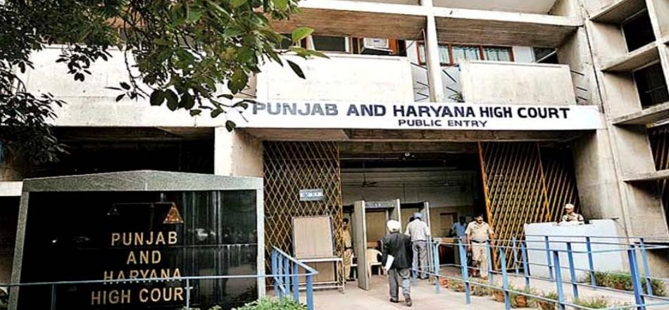 Punjab and haryana highcourt on chandigarh, city news