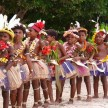 Shocking Sexual Tradition in papua