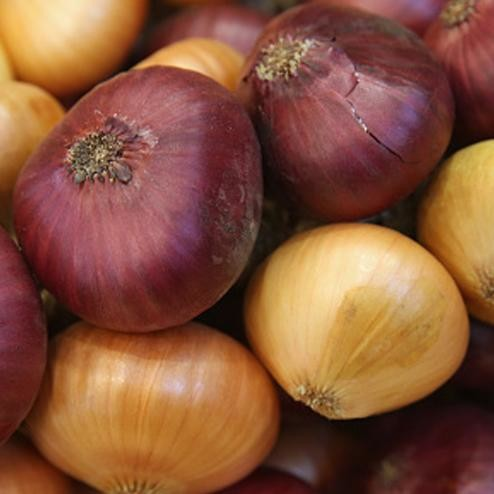 benefits of onion for health