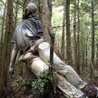 aokigahara forest japan's favourite suicide point