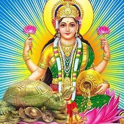 पैसे की तंगी बनी रहती है तो घर में लाएं यह 7 चीजें, मिलेगी देवी लक्ष्मी की कृपा