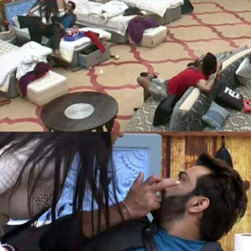 BIGG BOSS:Monalisa and Manu caught kissing