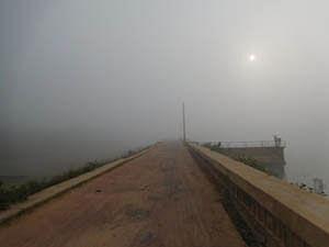 fog train roots