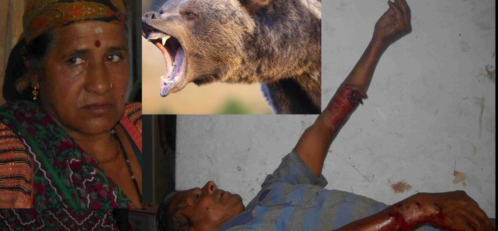 woman fight with bear to save husband.