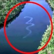 Picture of 100ft-long 'snake' sparks fears of mythical monster