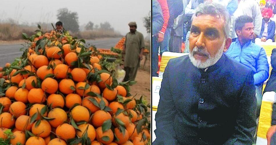 Farmer Success Story Hindi News, Farmer Success Story News In Hindi