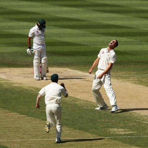 Australia Clean Sweeps Against Pakistan In Test Series