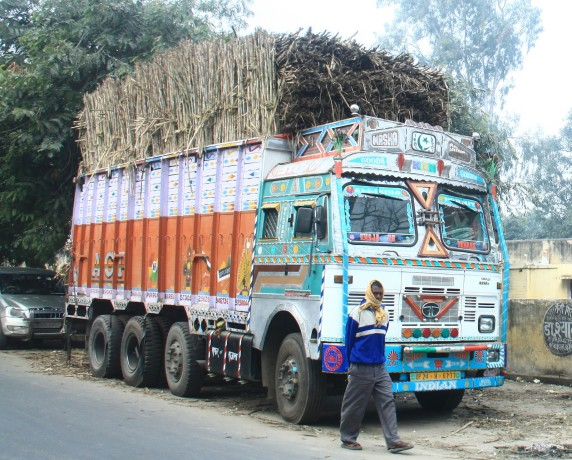 two trucks caught with cane