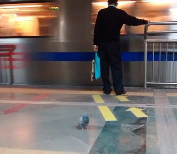 Viral News India: Photo Of Two Women In Brazil Went Viral, At Metro Station