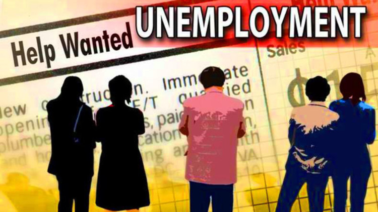 kanpur unemployed swindle case