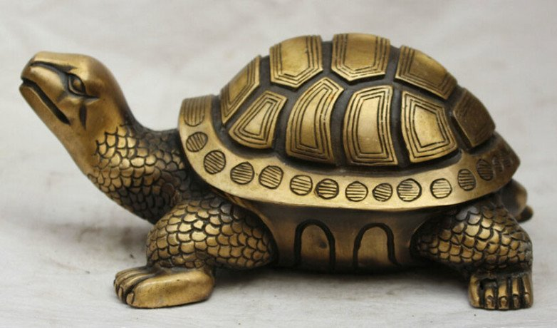 Turtle In Feng Shui Brings Good Luck And Prosperity